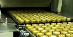 High tecnology industrial biscuits manufacturing facilities to produce the traditional Italian cookies